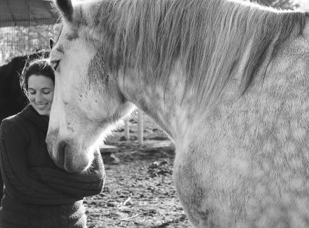 Christina Anderson - Animal Behavior