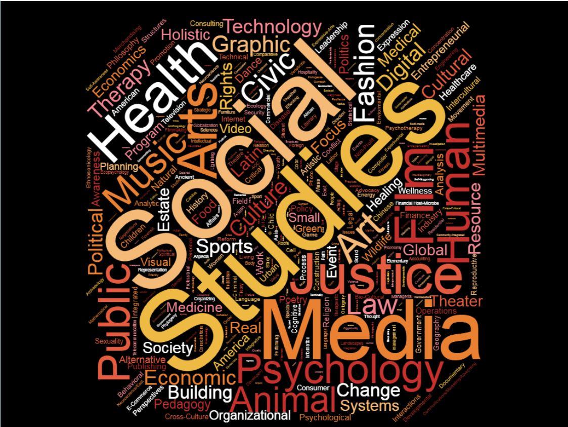 Social sciences wordle