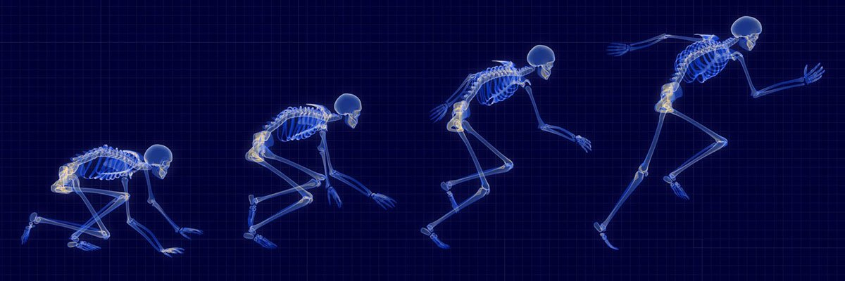 Is Exercise Medicine? An Evolutionary Medical Perspective
