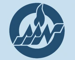 American Academy of Nursing logo