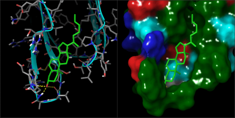 Small Molecule Property Prediction and Virtual Screening