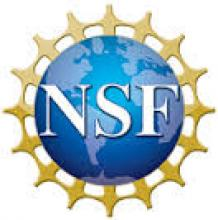 2016 NSF Graduate Research Award