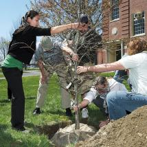 Class of 2005 tree planting