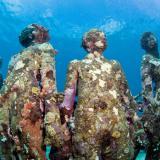 Vicissitudes, Jason de Caires Taylor, Grenada