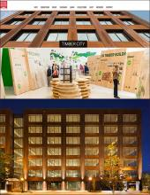 Skyscrapers made of wood (news cover)