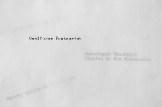 Gaelforce Postscript