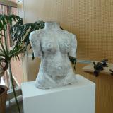 bust of a feminine torso