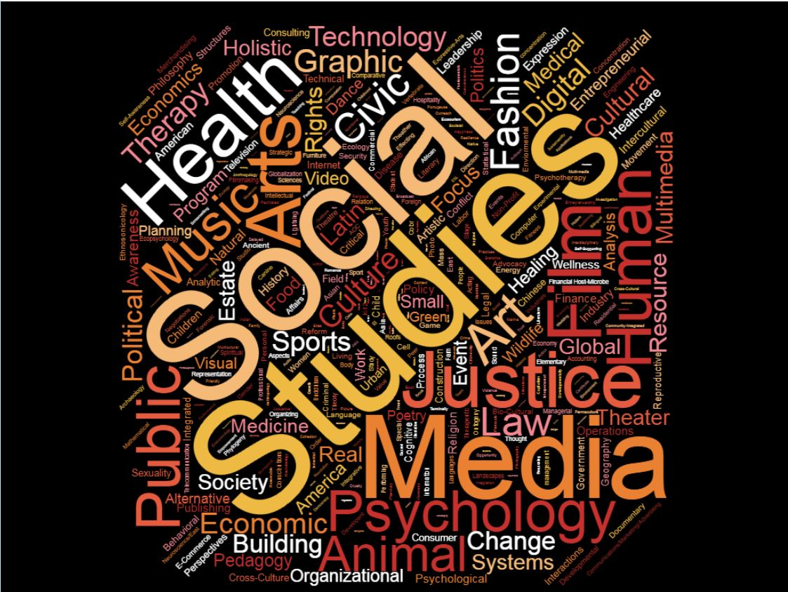 Social sciences wordle