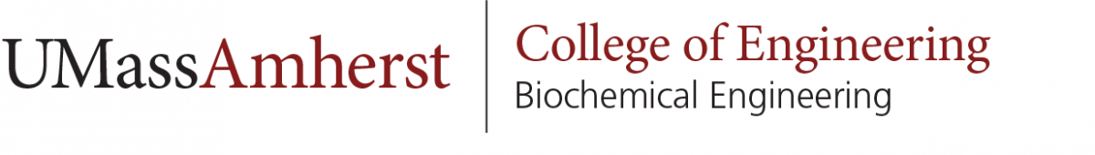 Biochemical Engineering Horizontal Wordmark