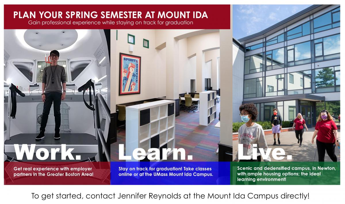 link to Mount Ida Campus, Internships web page