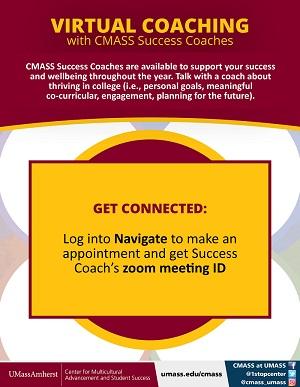 virtual success coaching