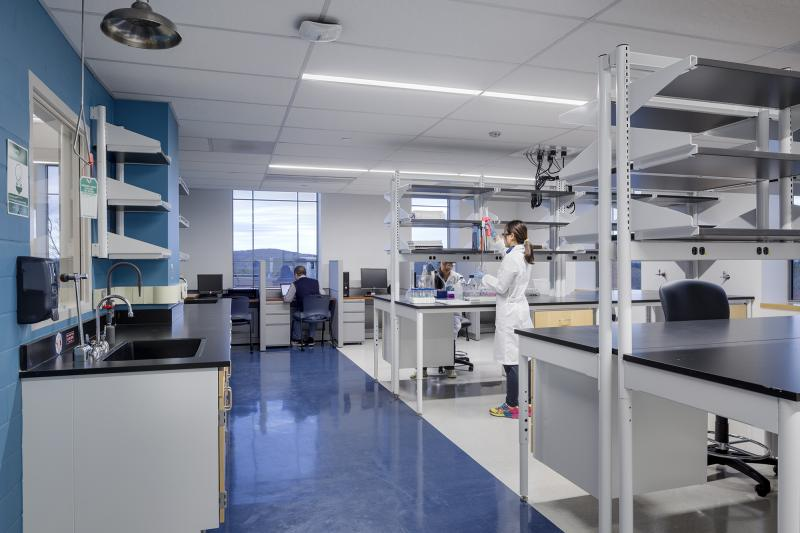 Research Laboratory & PAIGE LABORATORY RENOVATIONS - Facilities u0026 Campus Services - UMass ...