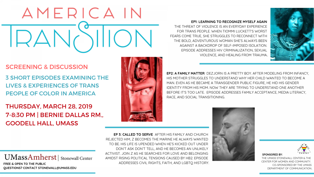 America in Transition Poster