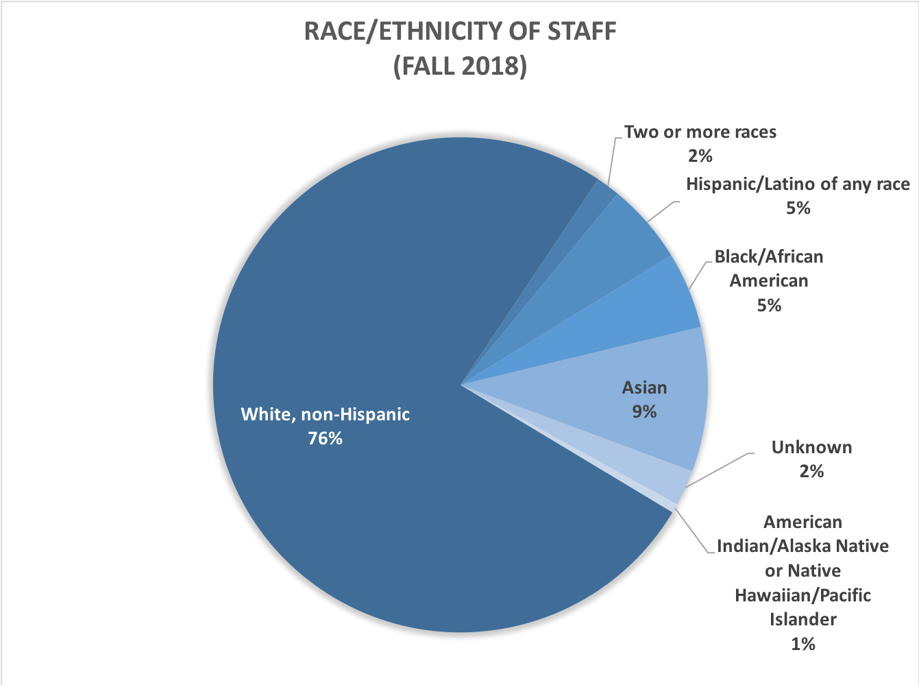 race and ethnicity of staff