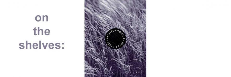 "image of book jacket, ""Archeophonics"""
