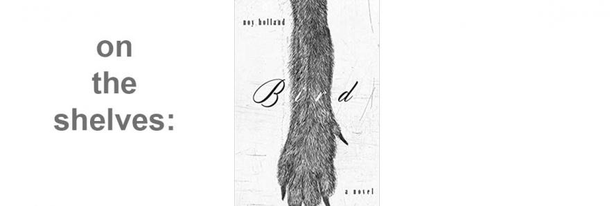 "image of book jacket, ""Bird"""