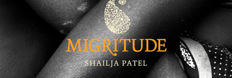 Banner Photo of Shailja Patel's Migritude