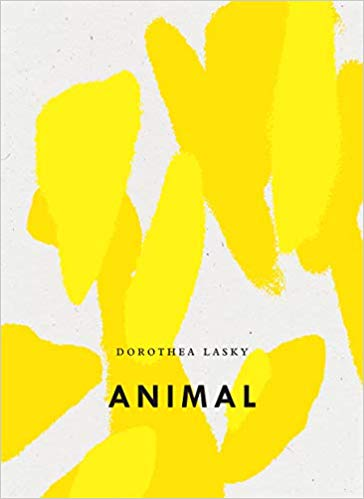 Cover: Animal