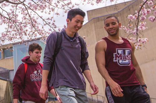 Three male students wearing UMass shirts walk outside during the spring.