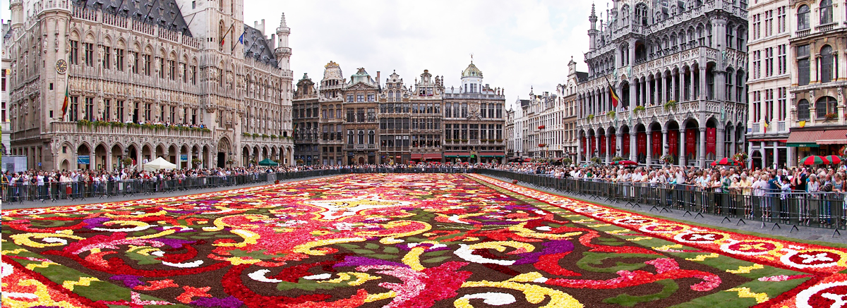 The Grand Place of Brussels surrounded by opulent guildhalls and two larger edifices.