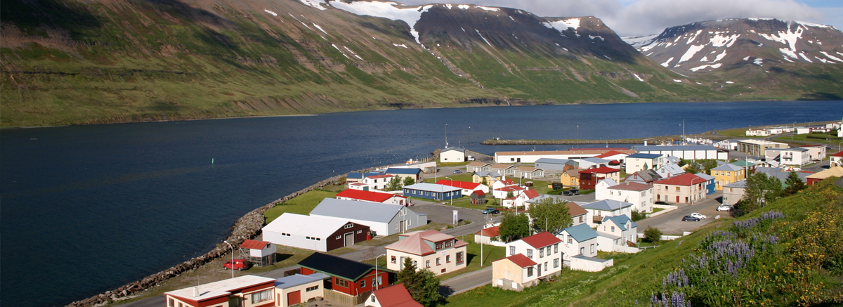 The town of Sudureyri in the Westfjords region of Iceland.