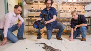 Dylan Briggs, holding the Beastcam, a device that produces 3-D images of live animals, experiment with a lizard. Left is Duncan Irschick, a biology professor, and right is Kasey Smart in Irschick's lab in Morrill Science. The trio have applied for a provisional patent for the device.