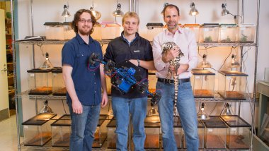 From left, Dylan Briggs, Kasey Smart, two seniors, and Duncan Irschick, a biology professor, with the Beastcam, and a lizard. The trio invented the device that can take 3-D models of live animals.