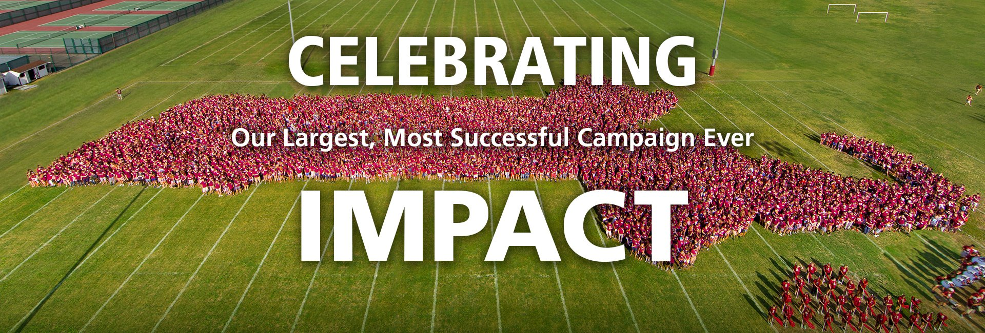 Celebrate Our Impact
