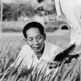 picture of two Chinese Agro-scientists in a field