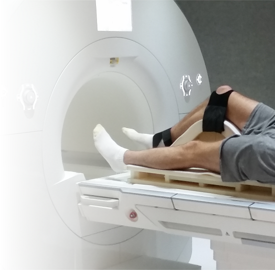 Human Magnetic Resonance Center | UMass Amherst