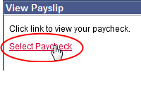 view-paycheck