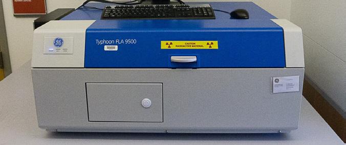 GE Typhoon Phosphorimager
