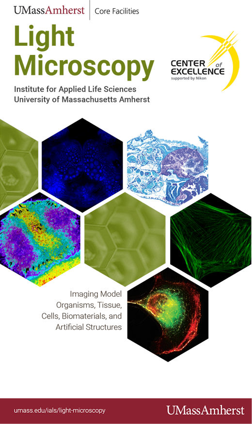 PDF version of Light Microscopy brochure
