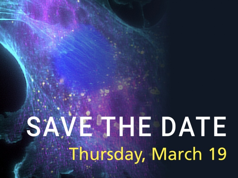 Save the Date-IALS All hands meeting