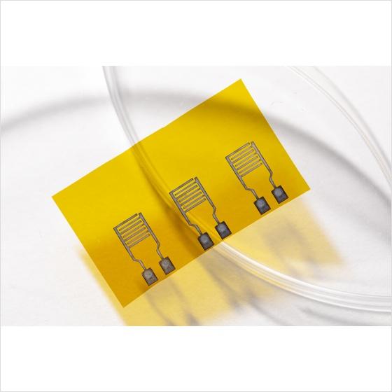 Bio-electronic sensor