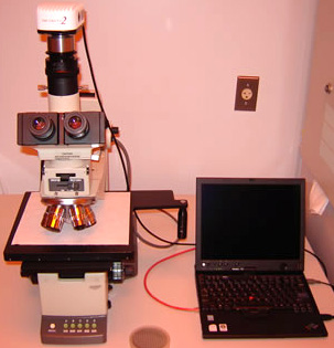 Olympus BH2 Microscope with Infinity 2 Digital Camera