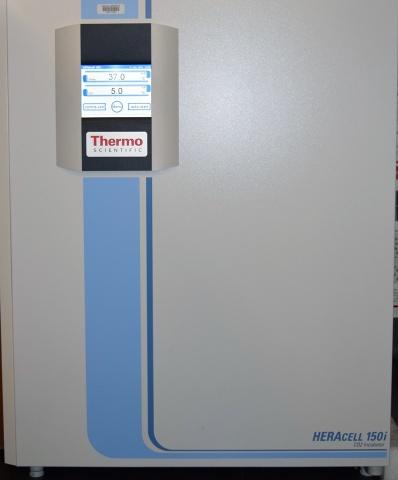 Thermo HERA150i Incubator
