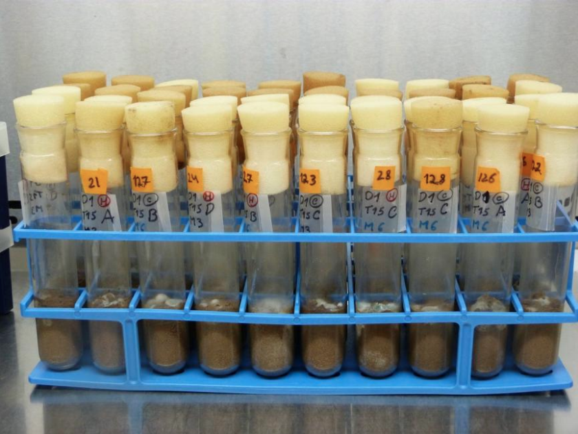 Test tube soils