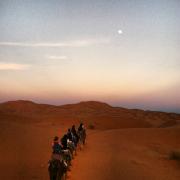 Morocco in the desert