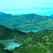 a green mountain scene