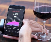 Close-up of person's hands, one holding wine glass and other holding smartphone with tracking app open