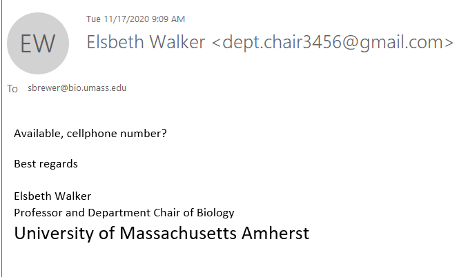 message claiming to be from Elsbeth Walker