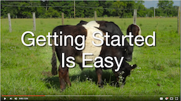 Video tutorial - Get started in Moodle