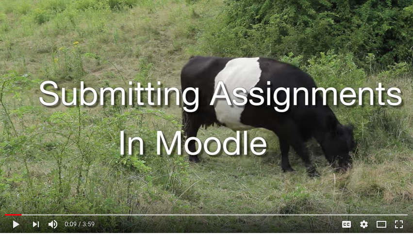 Video tutorial - Submitting assignments in Moodle