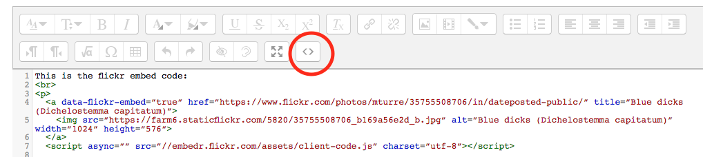 Make sure your Editor is in HTML mode (last toolbar button)