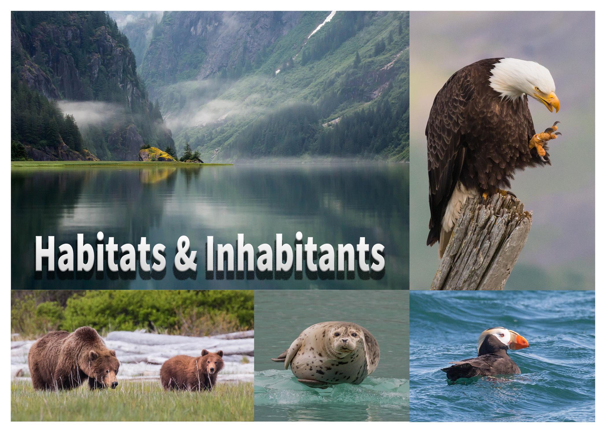 Habitats and Inhabitants-Fin