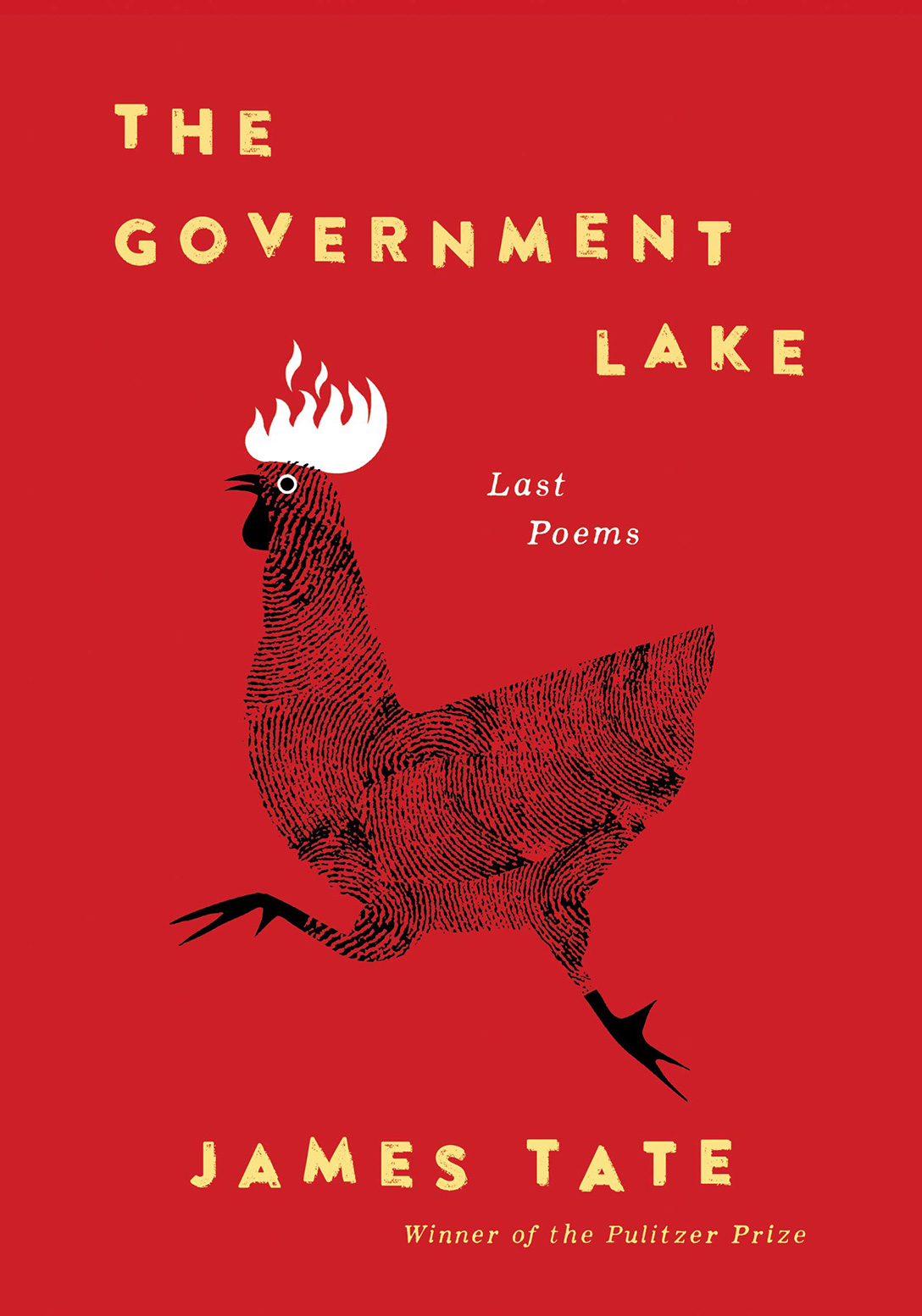 Book cover of The Government Lake by James Tate