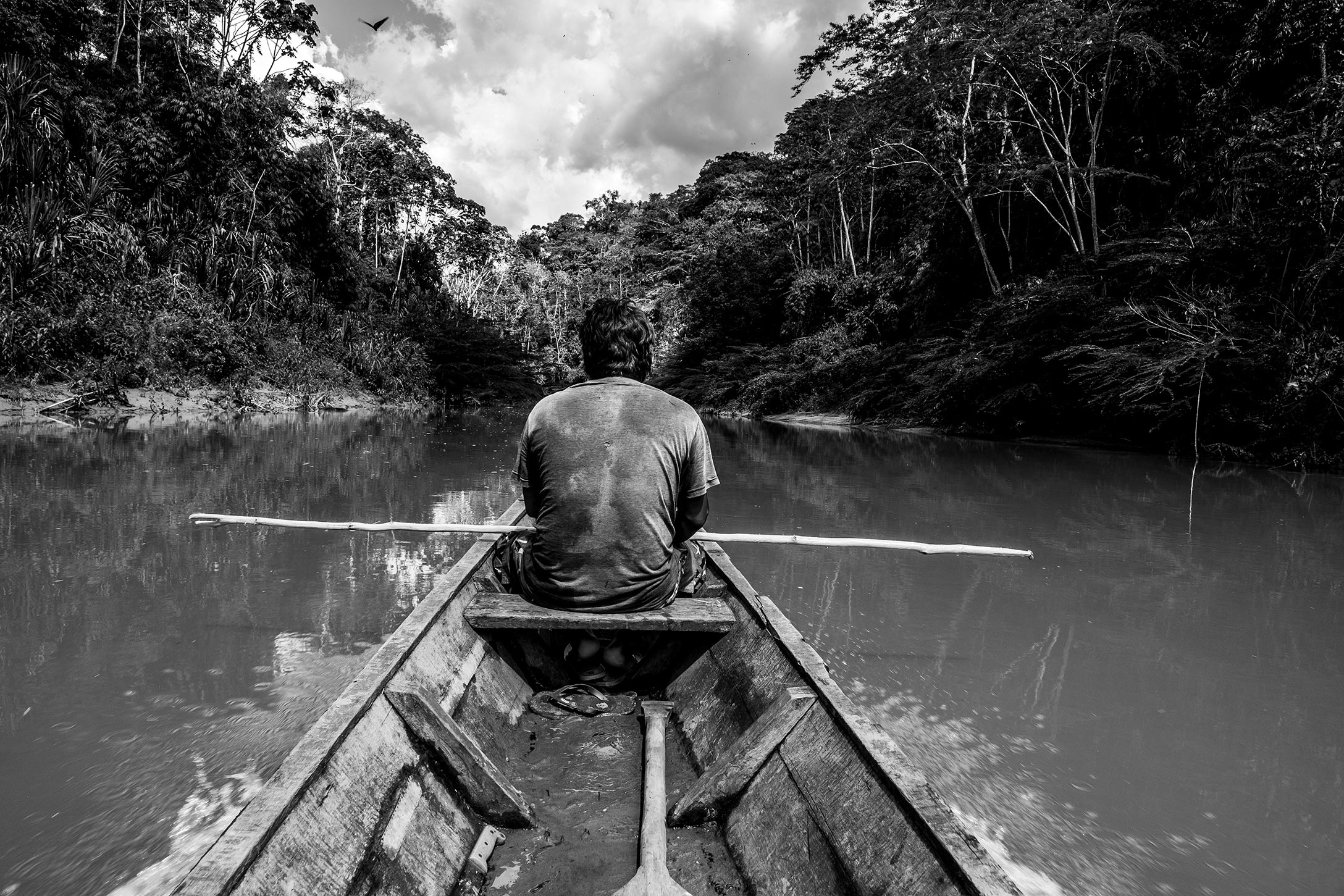 A man in a rowboat in a river surrounded by dense rainforest; he is seen from the back in this black and white photograph.