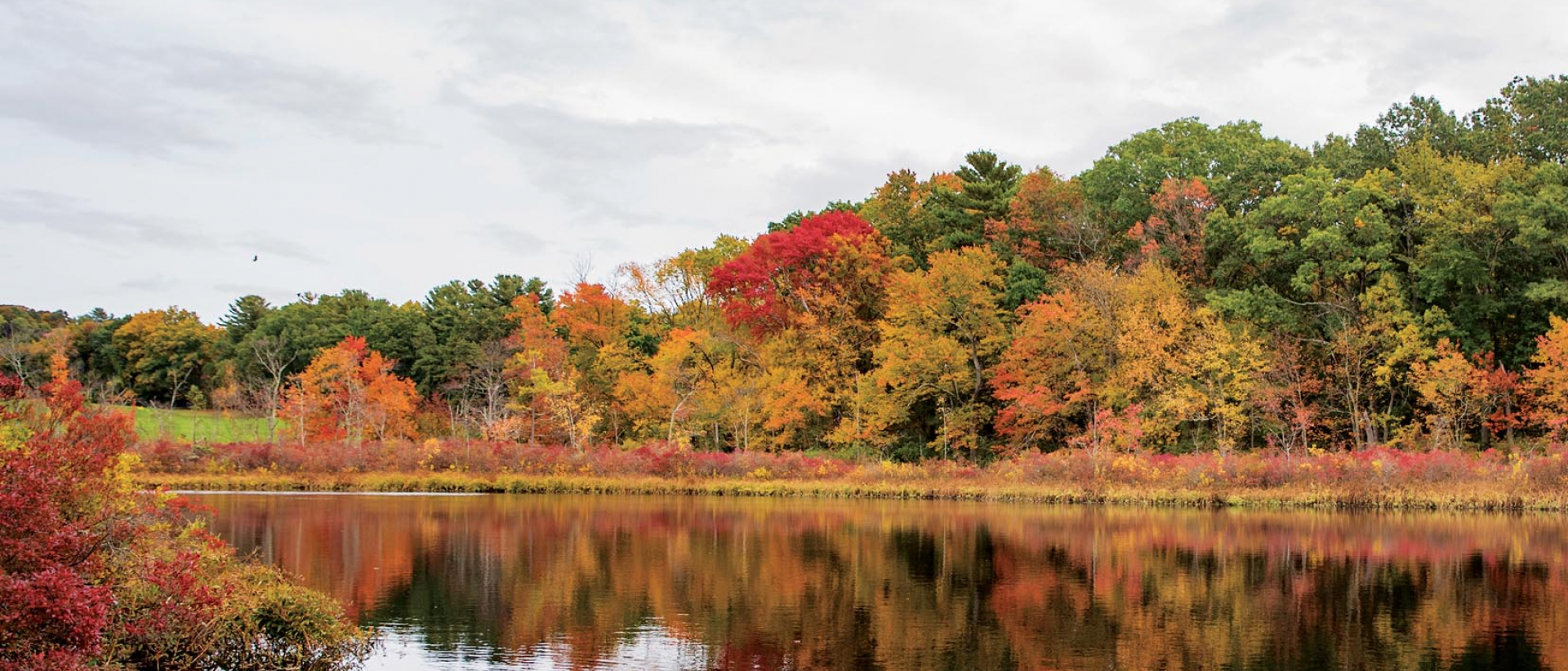 Lake in fall with brightly colored folliage