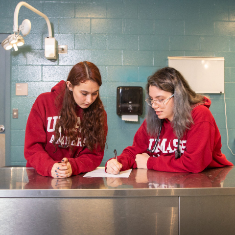 Students work in a lab space within the Veterinary Technology building at the Mount Ida Campus of UMass Amherst.